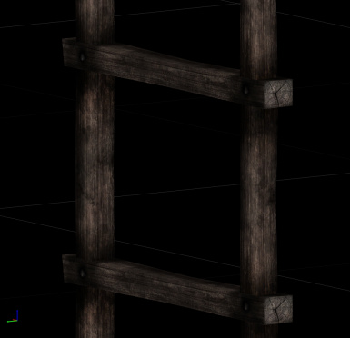 New ladder ( laddertall.nif ) not the one in thieves guild etc. leading to trap doors.