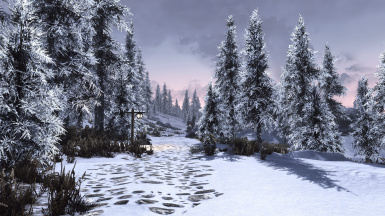 Obsidian Weathers and Seasons ENB  5  result