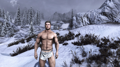 Obsidian Weathers and Seasons ENB  6  result