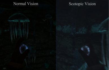Normal and Scotopic Vision Comparison