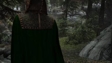 Bronze Cloak and Gown Detailing