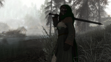 Argonian in Bronze Gown and Hood