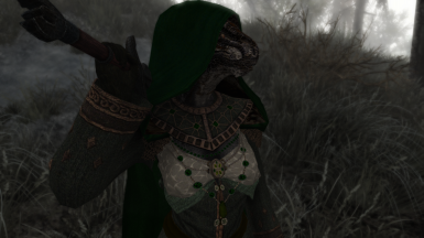 Argonian in the Morthal Swamp - Sleeves and Cloak (Bronze)