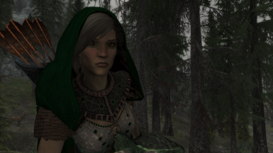 Hood shows hair on elves, orcs, and humans (KS Hairdo low ponytail).