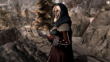 Close up on silver gown winter pieces (leather gloves, sleeves, hood, cloak)