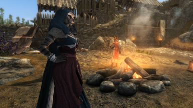 Khajiit with hood before fire (silver gown, hood hides hair for beast races)