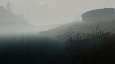 Water's Edge - Heavy Fog Patch