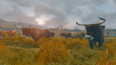Aurochs and Wild Horses - Mihail Monsters and Animals (SSE) (mihail immersive add-ons- bull- megafauna)