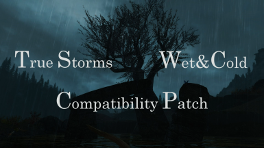 True Storms - Wet and Cold Compatibility