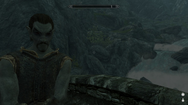 Dark Elves (Dunmer) have High Elves (Altmer) Racial Bonuses