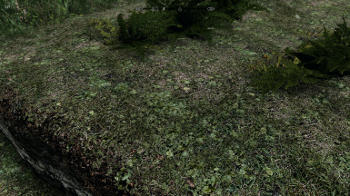 LH's Realistic Field Grass HD 2K-4K