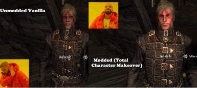 Seriously, use cosmetic mods