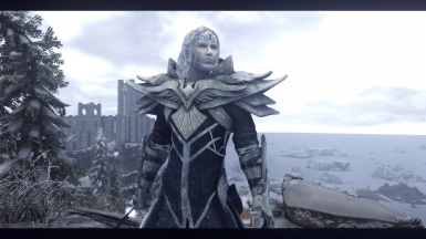 Snow Elf Spellsword. It's a wonderful mod! (Armor not included in this race mod)