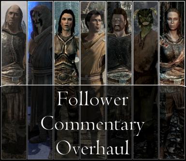 Follower Commentary Overhaul SE - FCO SE