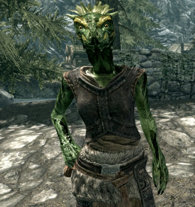 Keema the young female argonian warrior