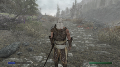 Witcher Race (A Witcher Like Mod) at Skyrim Special Edition