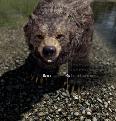 Honey the Nord Bear