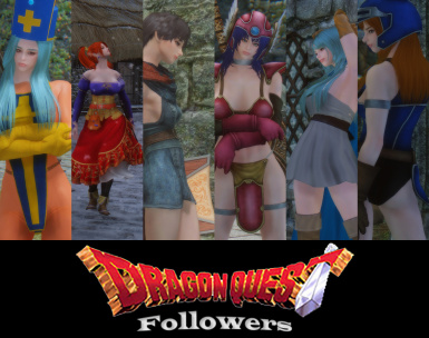Dragon Quest Followers SE