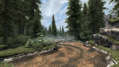 Alpine Forest of Whiterun Valley