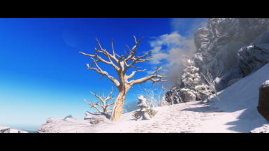 Surreal ENB at Skyrim Special Edition Nexus - Mods and Community
