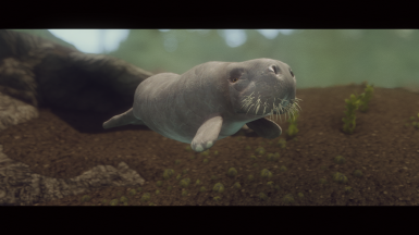 Dugongs and Manatees - Mihail Monsters and Animals (sse) (mihail immersive add-ons - megafauna - sealife)