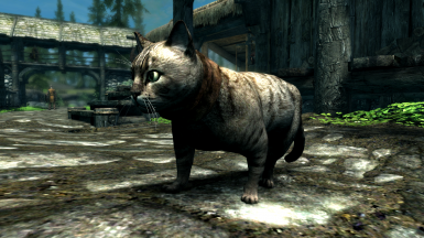 House Cats- Mihail Monsters and Animals (SSE)(mihail immersive add-ons - pets- witcher)