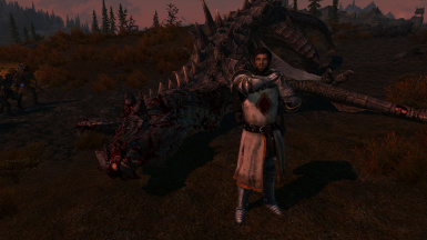Occupation: knight, hobby: dragon punching