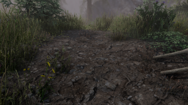 New dirt02 texture - lore-friendly