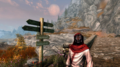 Travllers of Skyrim SSE