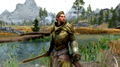 Faendal Fin Fahliil Kendov (The Elven Warrior)