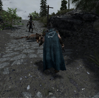 Windhelm Cloak Worn version