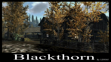 Blackthorn - A Buildable Town - Patches