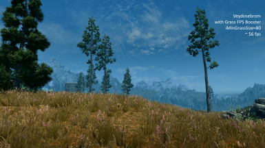Grass FPS Booster at Skyrim Special Edition Nexus - Mods and Community