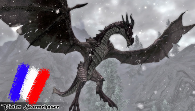 Bellyaches New Dragon Species SSE - Fr
