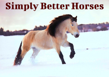 Simply Better Horses (SSE)