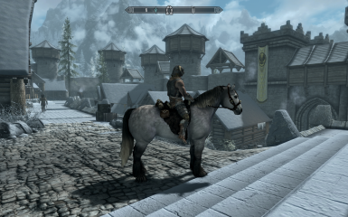 Ride your Skyrim horses in Bruma.