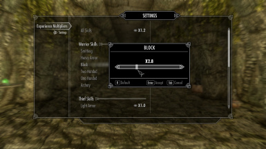 Experience Multipliers (MCM sliders for each skill) at Skyrim