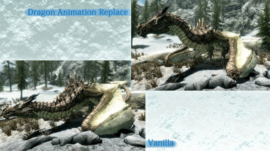 Dragon Animation Replace in Special Edition