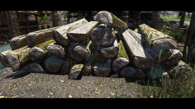 Tree Pine Forest Cut Logs and Stumps HD