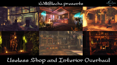 The Useless Shop and Interior Overhaul SE