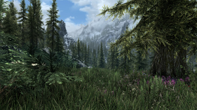 Lightweight Grass Overhaul - Landscapes - Terrain LOD - Cathedral Concept
