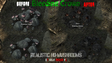 Bleeding Crown on ground