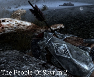 THE PEOPLE OF SKYRIM 2