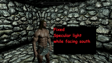 SSE Character Specular Lighting Fix at Skyrim Special