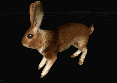 Rabbit HD