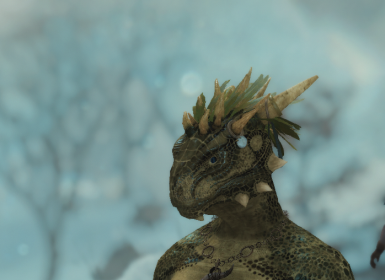after - hairargonianmale10