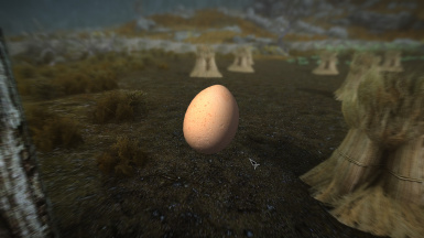 Chicken's Egg