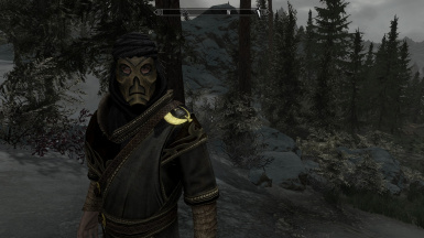 Hoodless Dragon Priest - Improved Closefaced Helmets