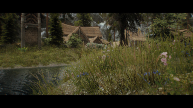CFL ENB - forest grass