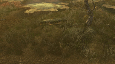 Vanilla Lighting - beach grass